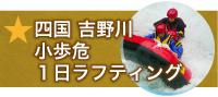 四国 吉野川 1日ラフティング