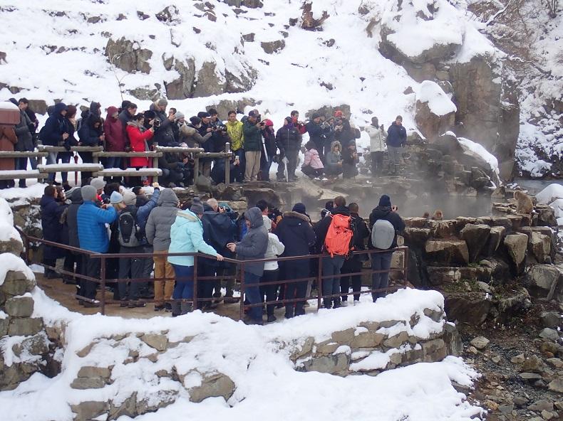 地獄谷温泉スノーボード。社会人サークルナッツベリー
