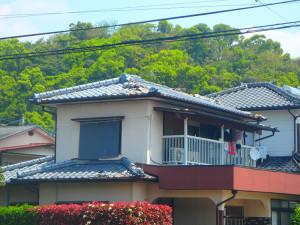 kumamoto-(3)